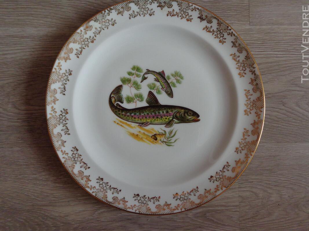 12 assiettes + 1 plat poisson  porcelaine de limoges 313355350