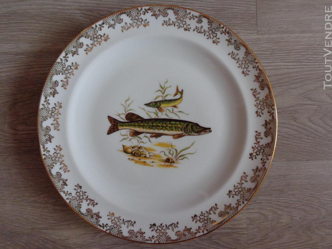 12 assiettes + 1 plat poisson  porcelaine de limoges 313355353