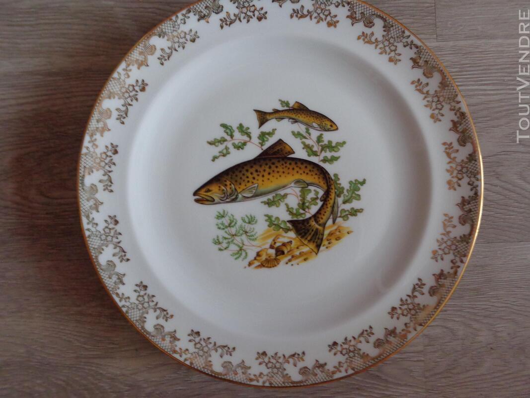 12 assiettes + 1 plat poisson  porcelaine de limoges 313355356