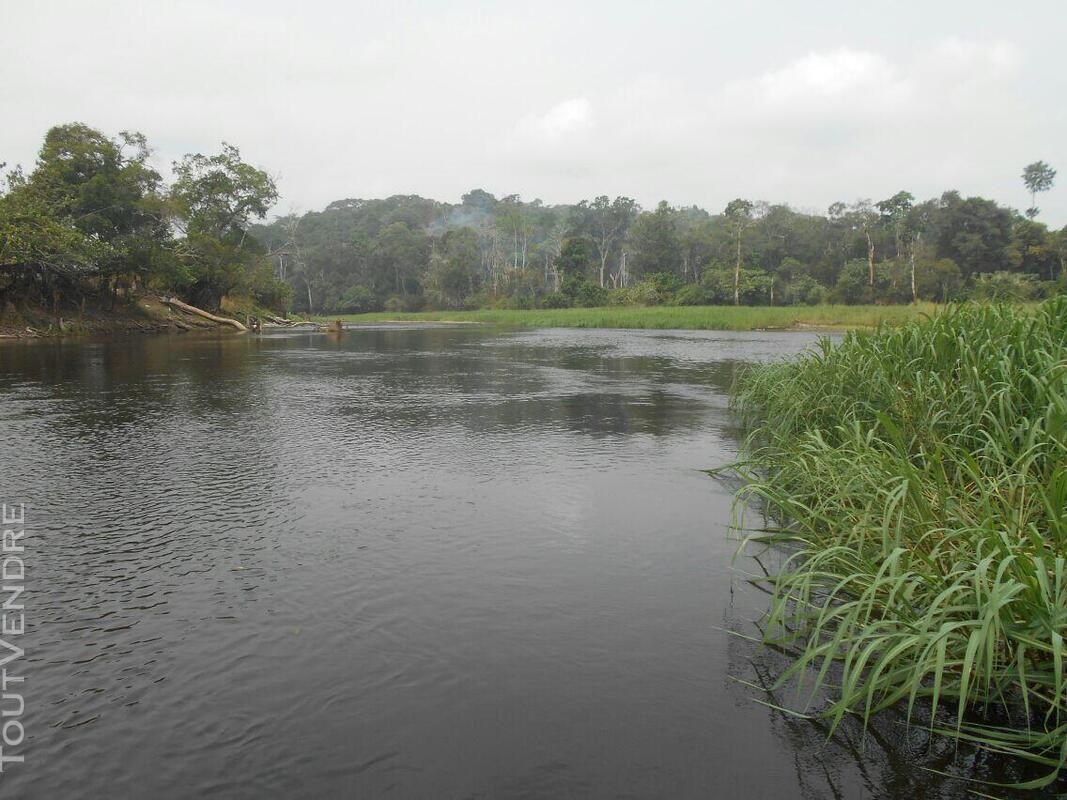 500 hectares de terrain agricole à louer à Mengang / Camerou 784094987
