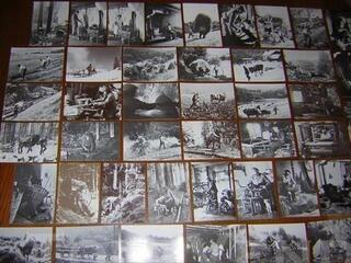 88 Vosges Lot 48 cartes vieux métiers 1975 1981 1 à 48