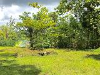 A VENDRE - TERRAIN A TARAVAO-AFAAHITI