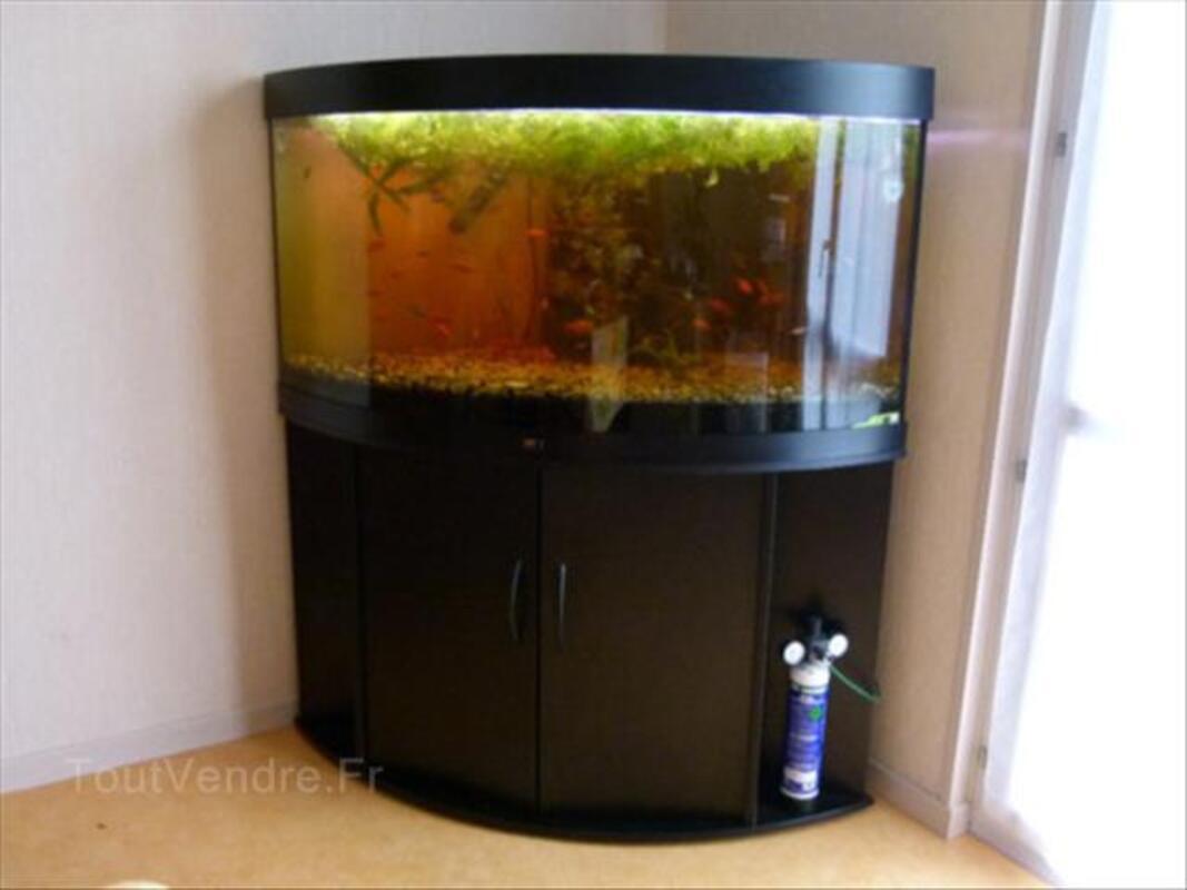 Aquarium juwel d'angle panoramique 350 l 55849945