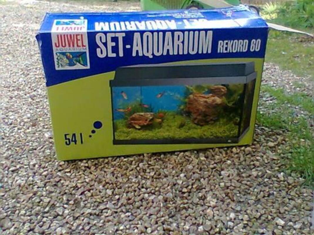 Aquarium 274