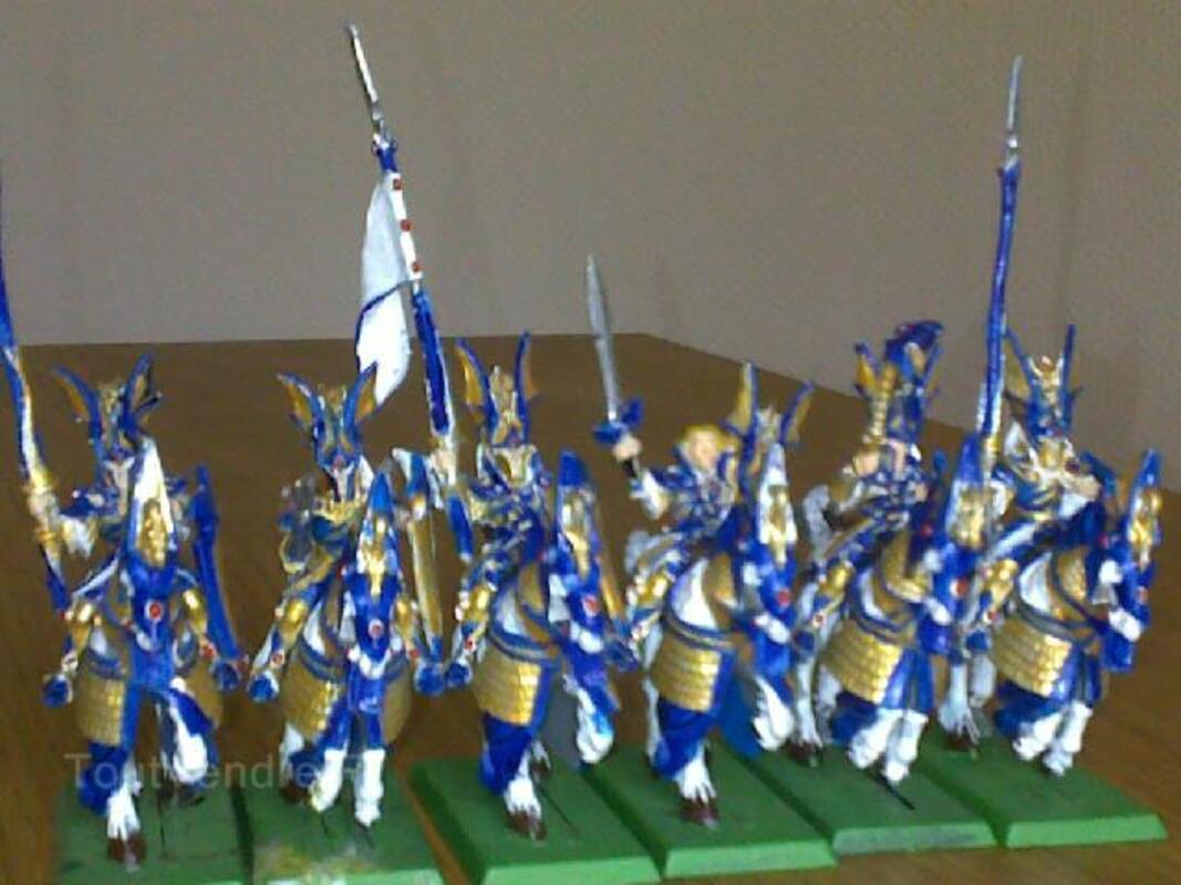 Armée warhammer haut elfes 97249403