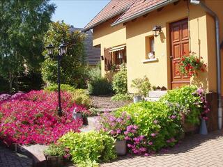 Artisan jardinier - paysagiste