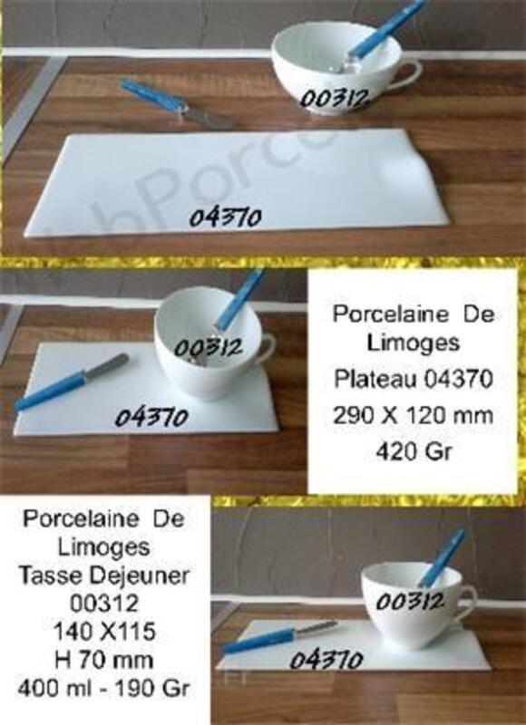 Assiette 04370 porcelaine de limoges 36884330