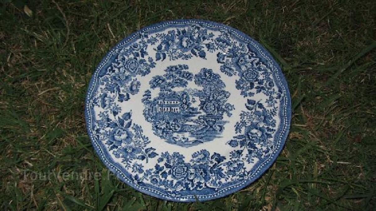 "Assiette anglaise du 20e siècle ""Toquin by Myott"" 90781141"