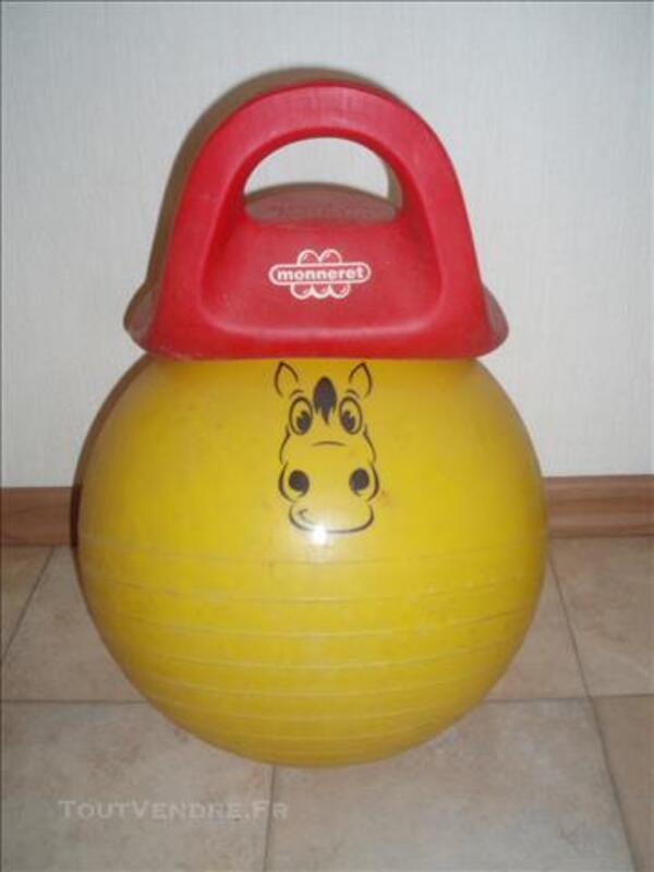 Ballon jeux en plein air 85276344