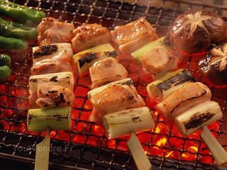Barbecue Moderne avec Four et Evier AV930F
