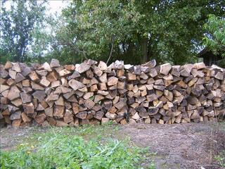 Bois de chauffage en 50cm pour cheminée et poêle a bois