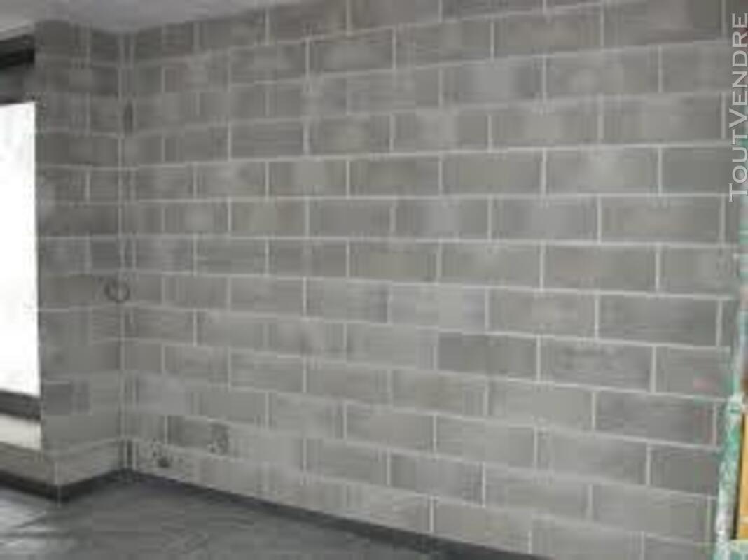 Bricolage  Travaux  Jardin MULTI SERVICES 34 158797308
