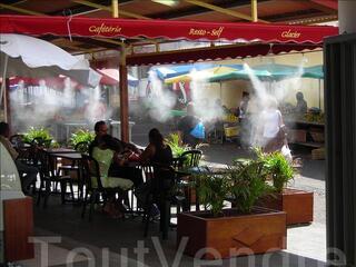Brumisateurs haute pression à la Réunion - BRUMISATION OI