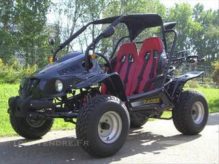 Buggy 250cc racer250 boite auto