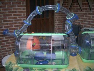 Cage pr mini hamster ou souris