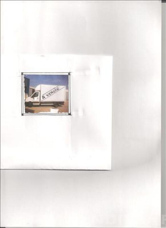 CAMION GRAND VOLUME VOLKSWAGEN 291GD BLANC 78878815
