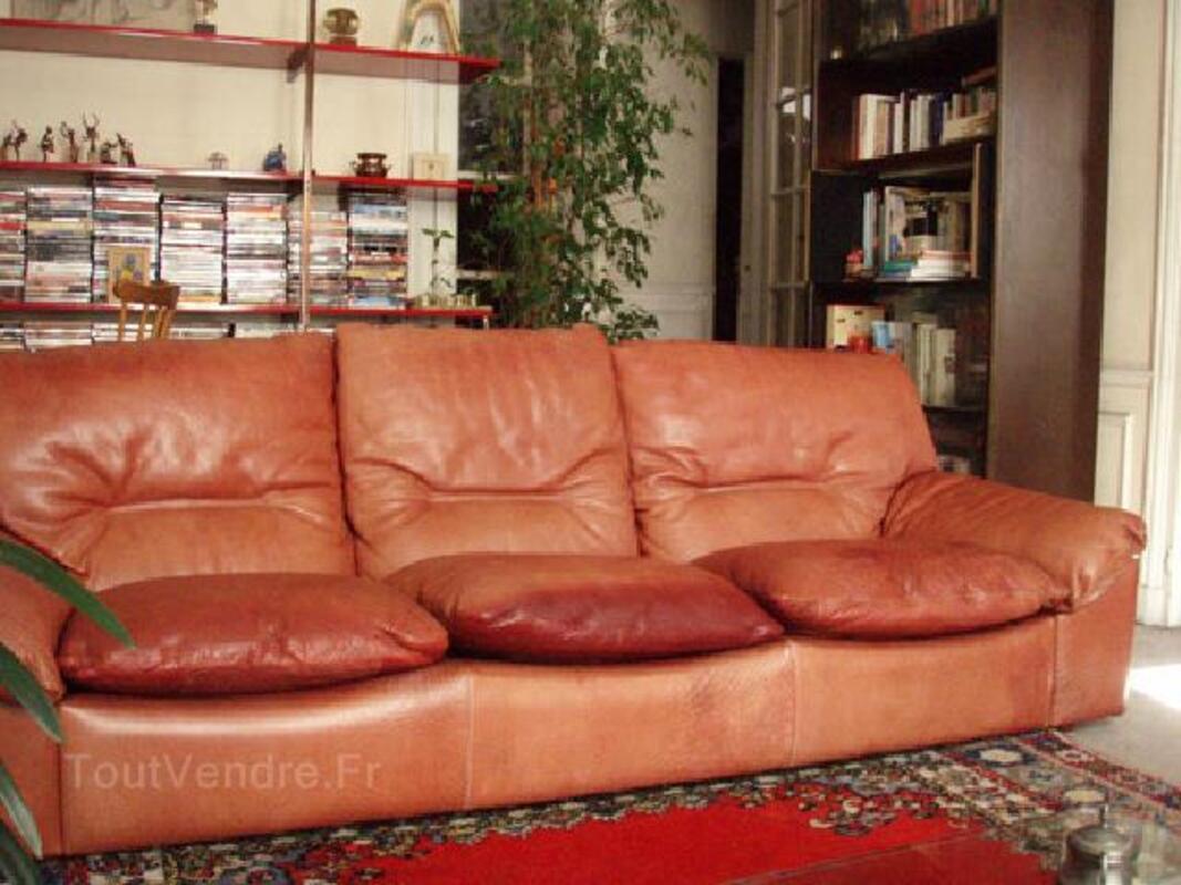Canape Roche Bobois cuir fauve 3 places 93803064