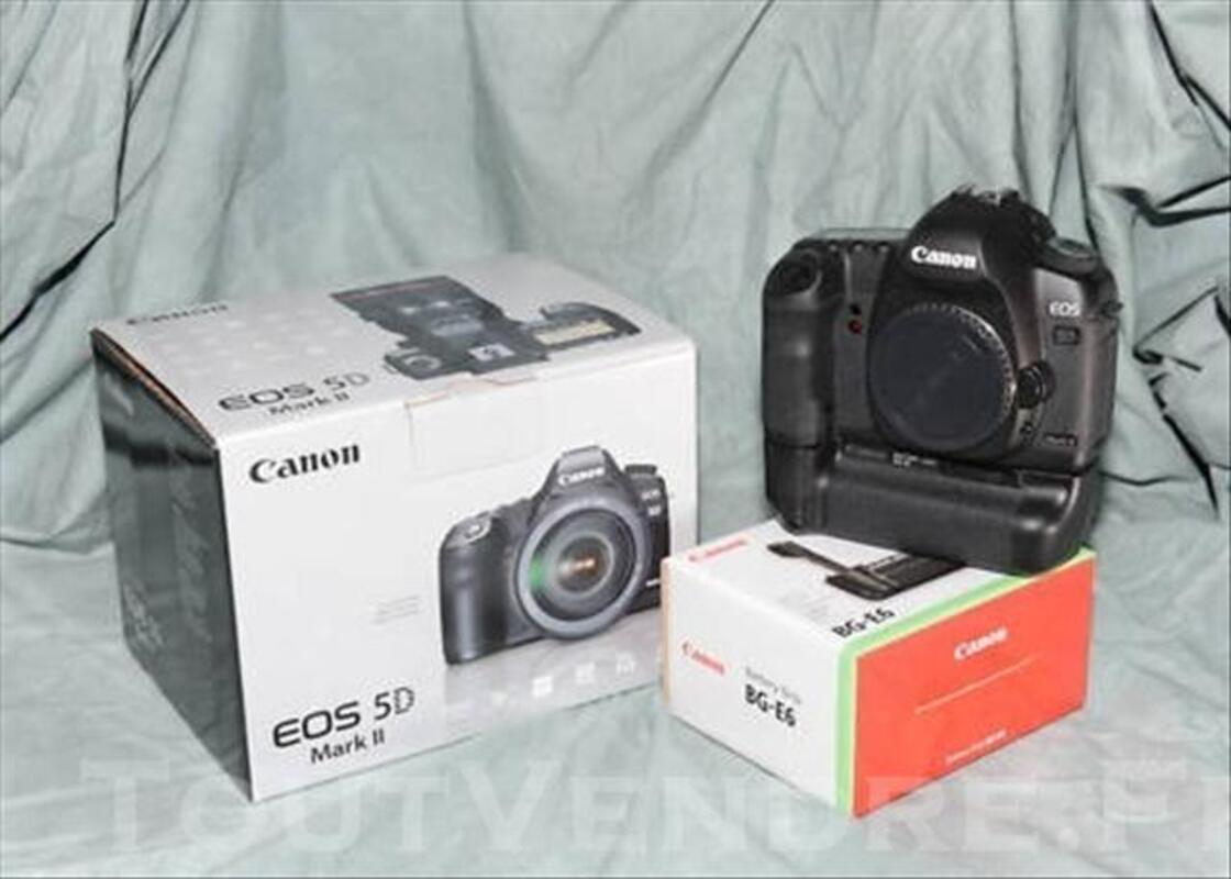 Canon 5d mark II+grip,50mm,85mm,flash 73975969