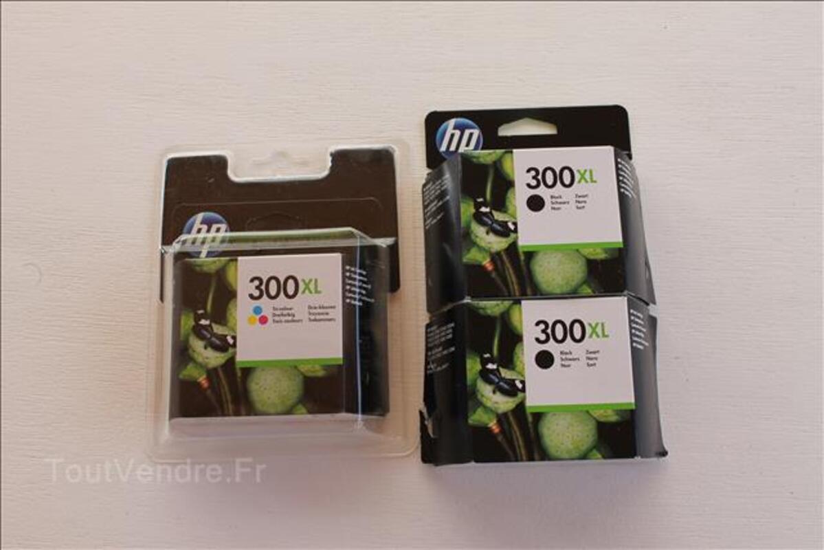 Cartouches 300XL pour imprimantes 101825003
