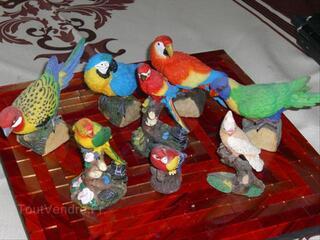 Déco oiseaux perroquets
