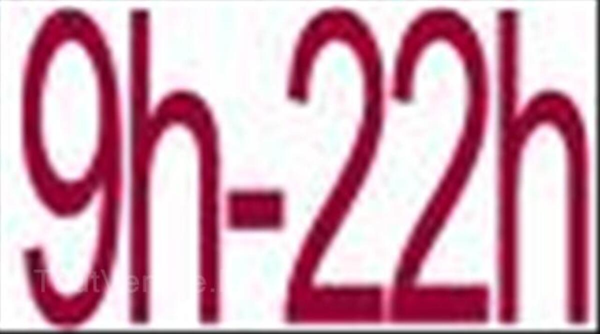 Déménagement pas cher par des artisans déménageurs 44743688