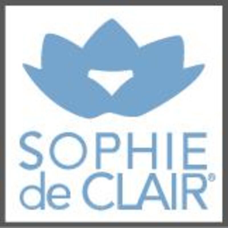 DEVENEZ CONSEILLER/ERE SOPHIE DE CLAIR / VADELYS 2340167
