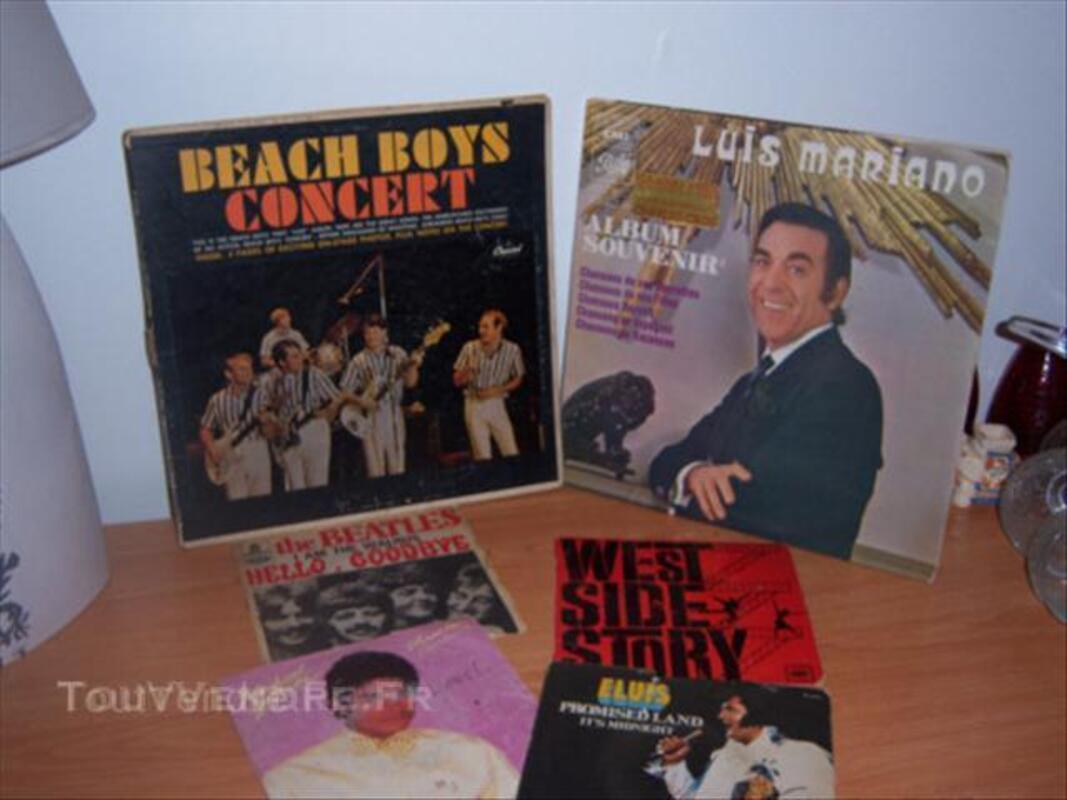 Different vinyle 33 et 45 tours. 43787955