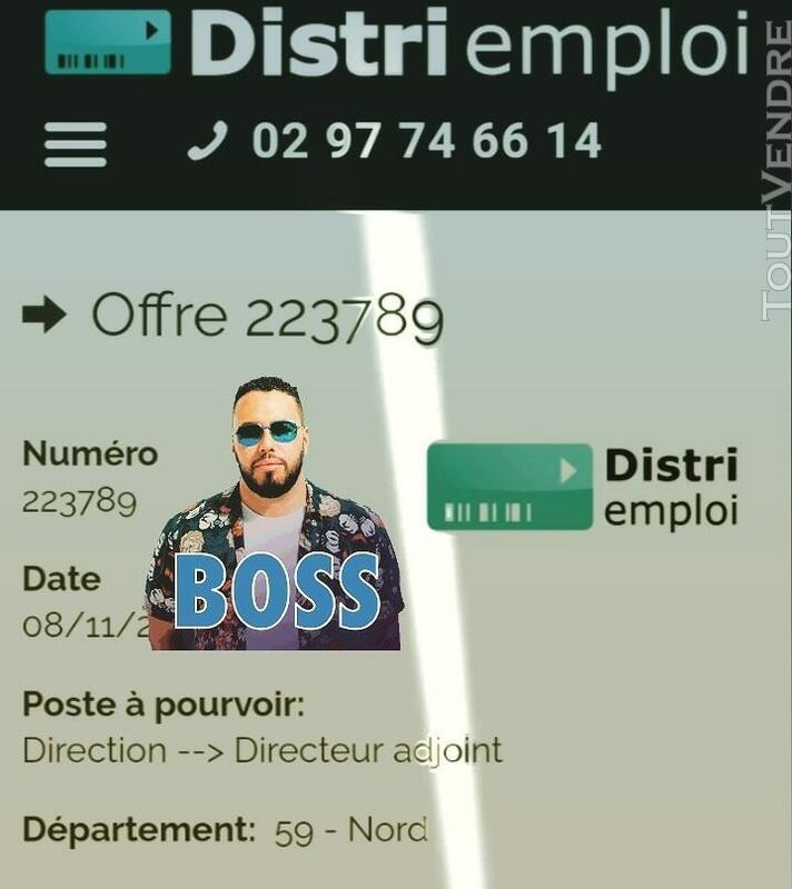 Directeur adjoint H/F 613320450