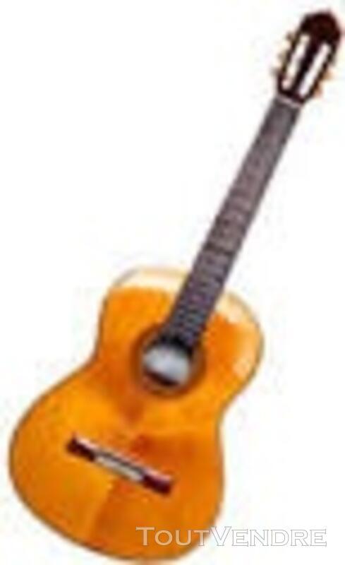 Ecole de guitare en ligne 120739903