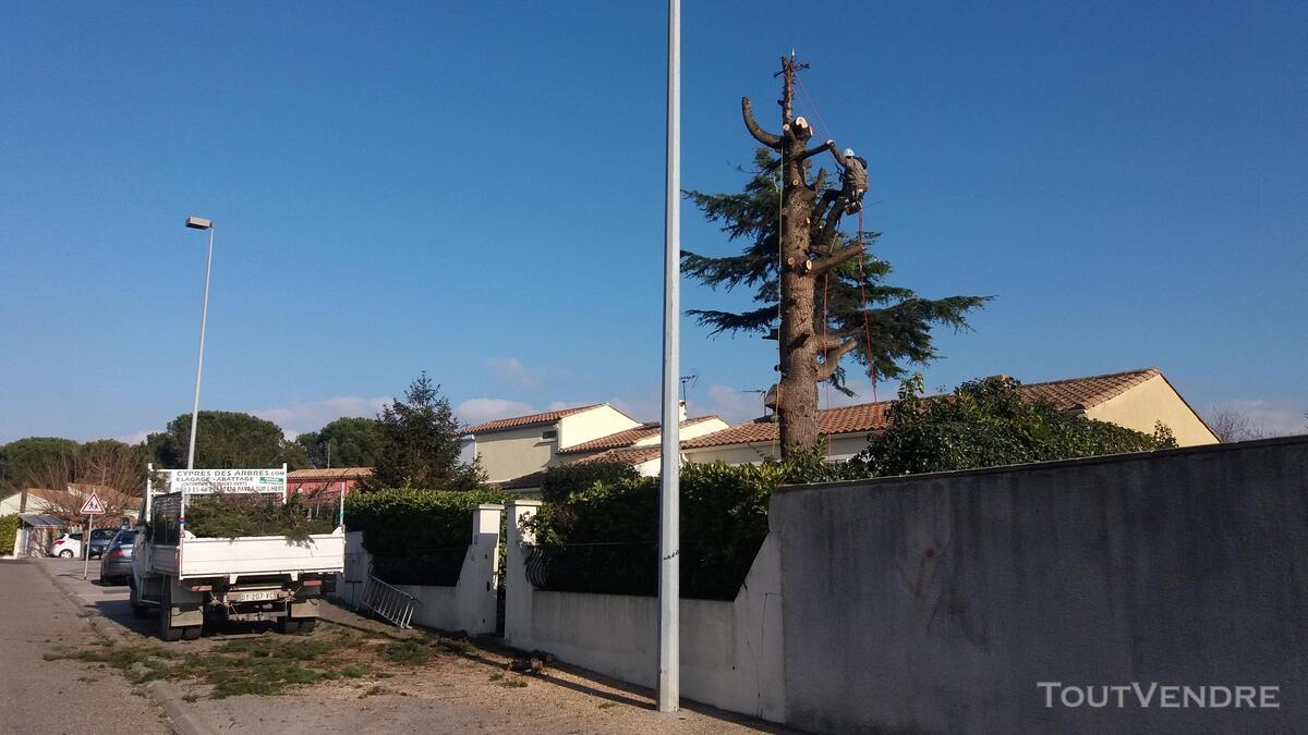 Entreprise d'élagage et abattage d'arbres Carcassonne Aude 240385566