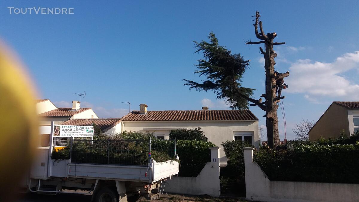Entreprise d'élagage et abattage d'arbres Carcassonne Aude 240385578