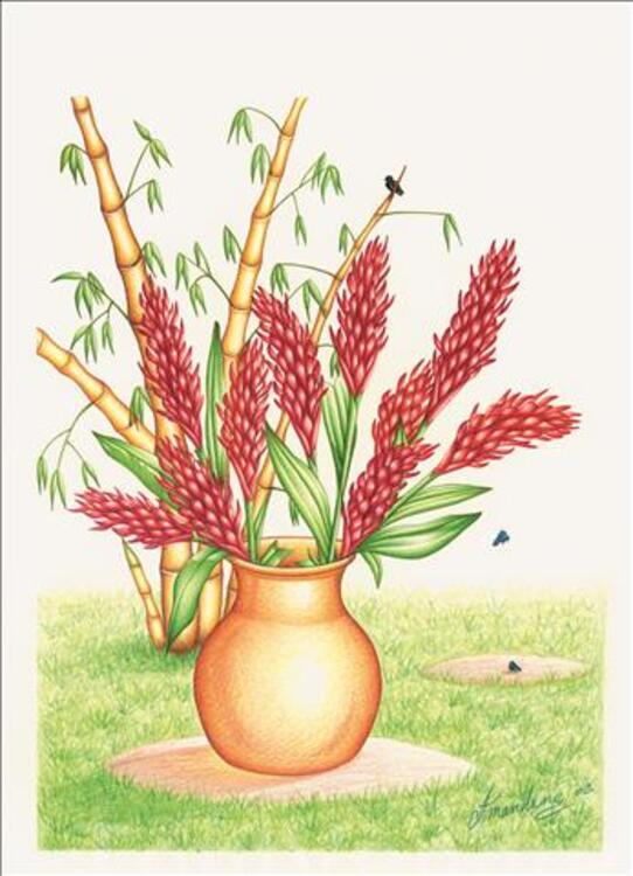 FLEURS ET PLANTES TROPICALES 42567016