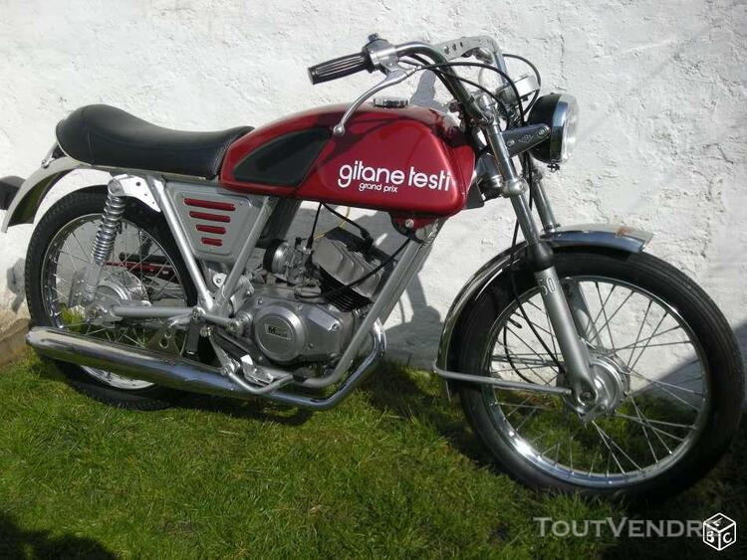 Gitane testi champion 178250663