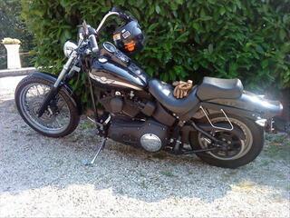 Harley Davidson softail 1450 carbu