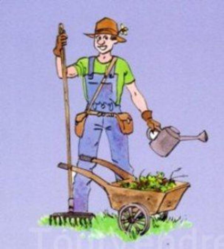 Jardinage, bricolage et multi-services dans le var 7678942