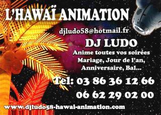 L'hawai animation (DJ Ludo)