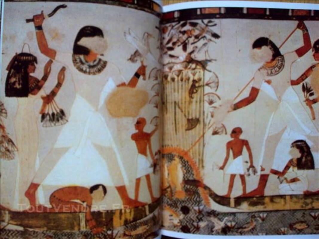 Le fabuleux héritage de l'Egypte DESROCHES NOBLECOURT 77349682