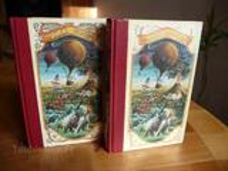 Livre Michel STROGOFF de J. VERNE en 2 volumes