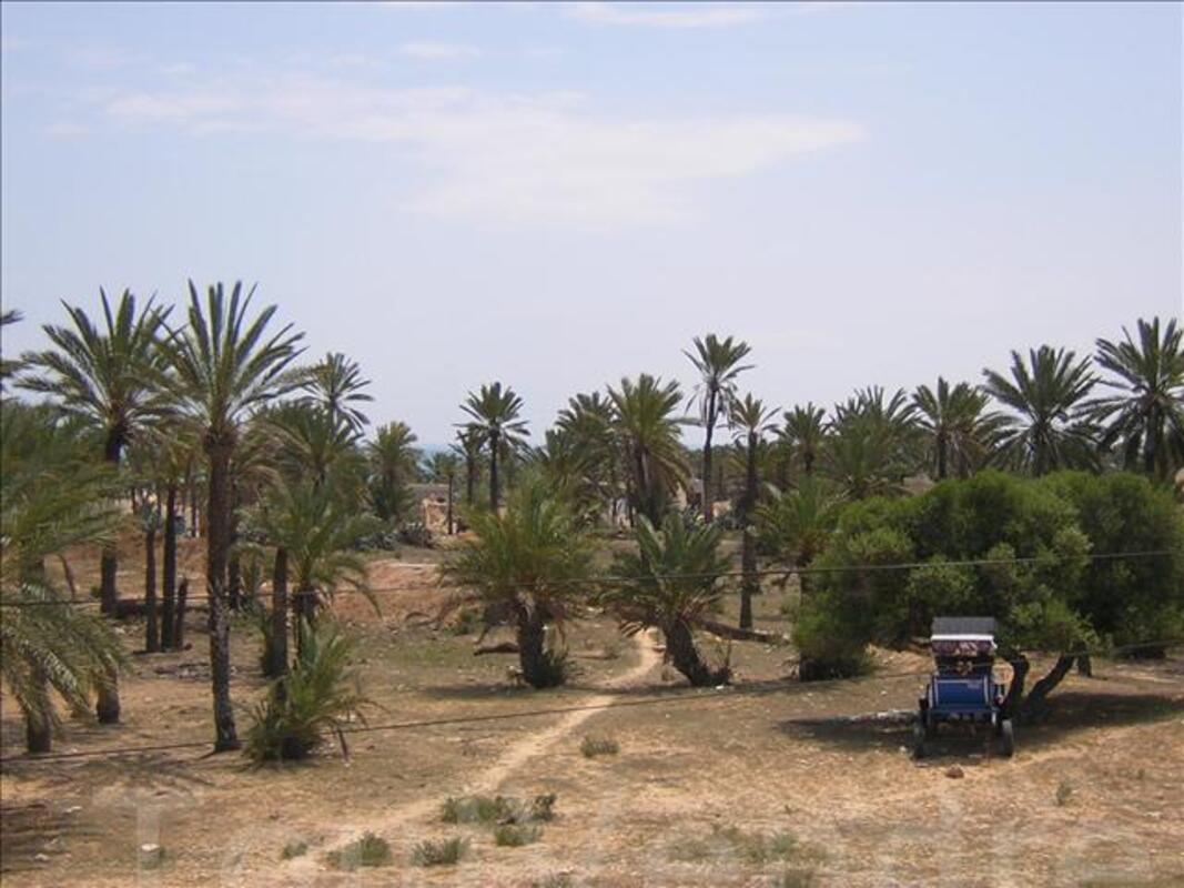Location maison Djerba recente 150m2 à 300 m de la plage 3010