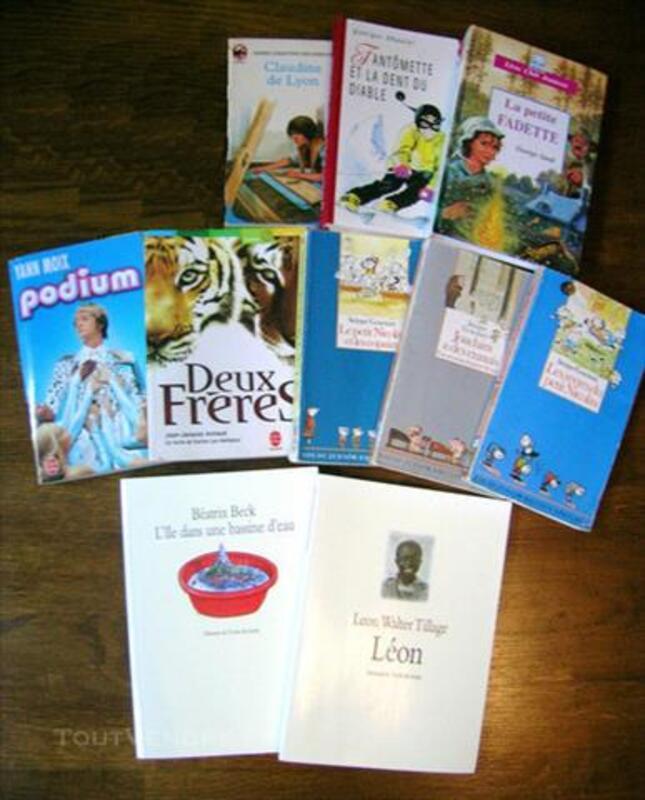 Lot de 10 livres Neuf & Occasion 77536353