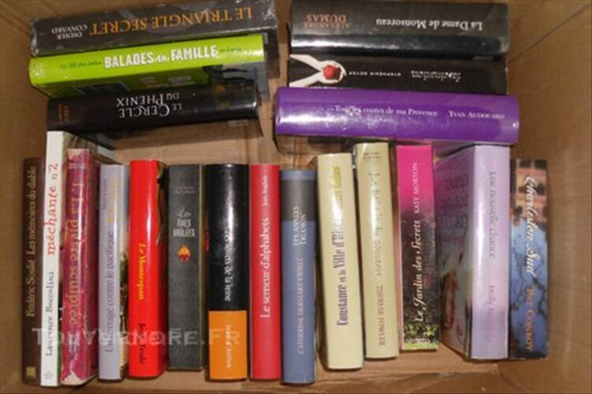 Lot de 19 livres romans divers 46713524
