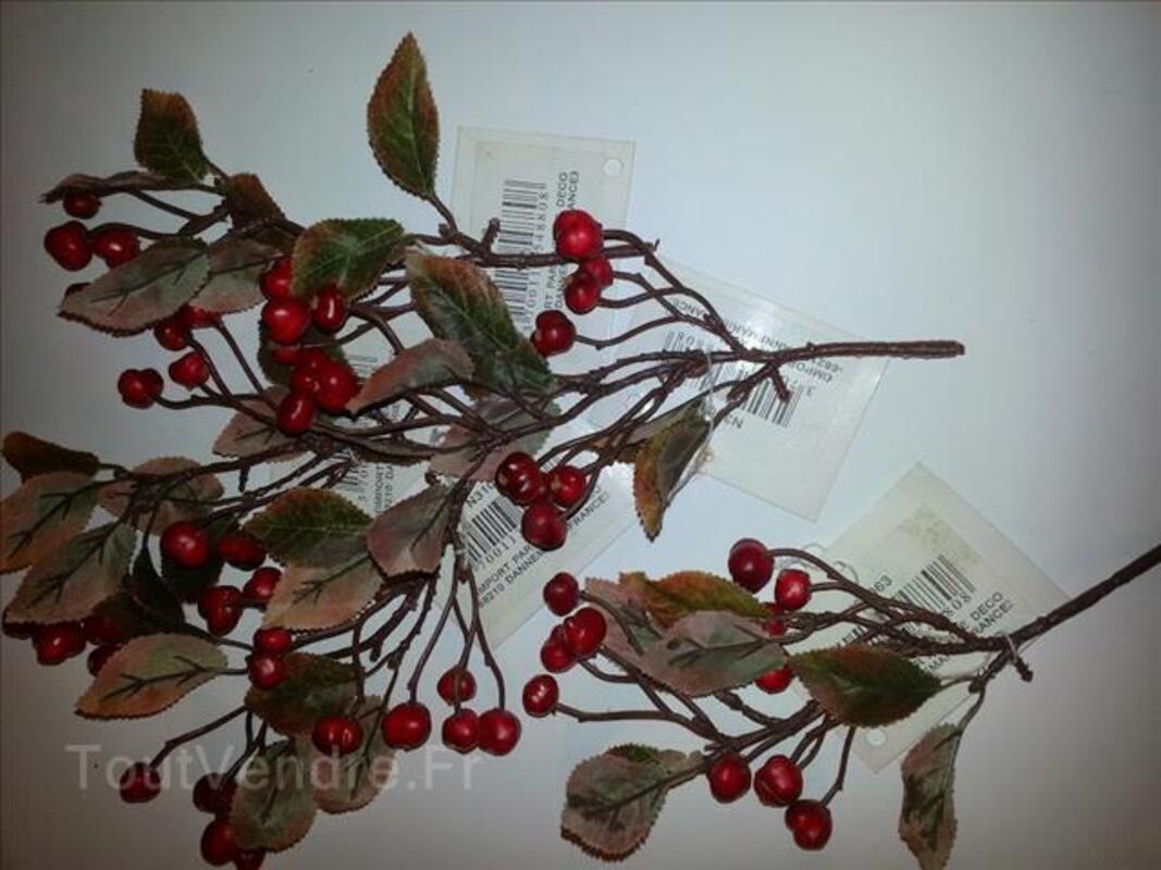 Lot de 5 branches de baies rouge, 25 cm 100769784