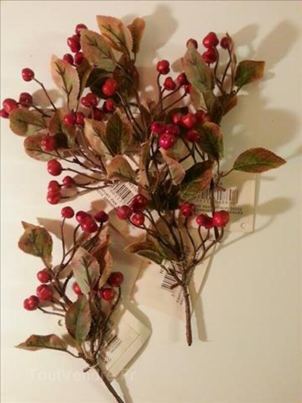 Lot de 5 branches de baies rouge, 25 cm 100769827