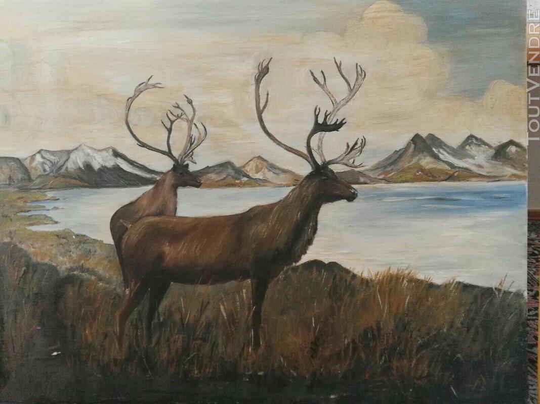 Nombreux tableaux, cadres et miroirs 561938841