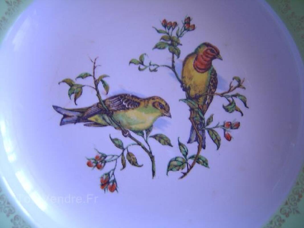 Paire assiettes luneville oiseaux badonviller 89829674