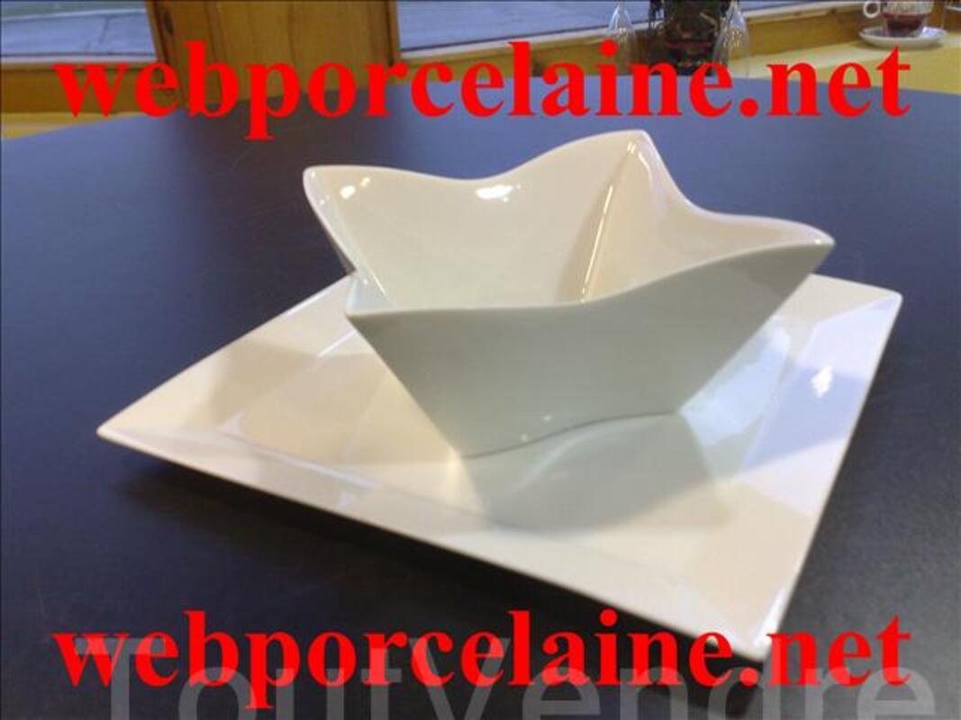 Porcelaine aquitaine 49745692