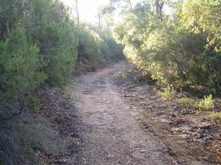 Propriété agricole et forestiere de plus de 28 ha VAR