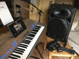 Système de sonorisation Yamaha TYROS 5 +