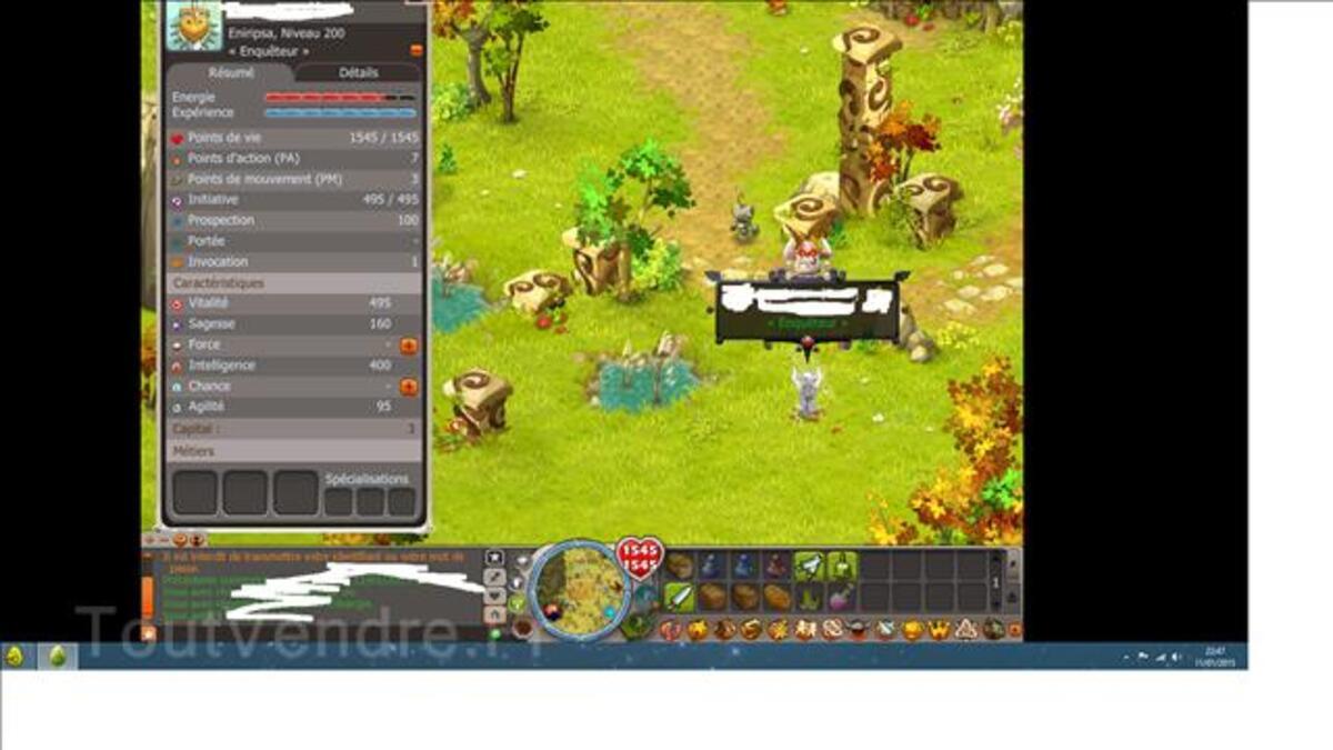 Team level 200 Dofus à vendre 100088541