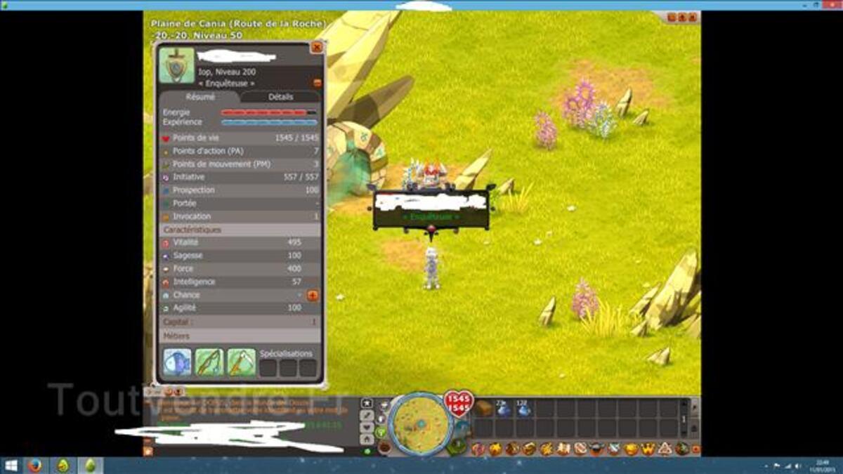 Team level 200 Dofus à vendre 100088542